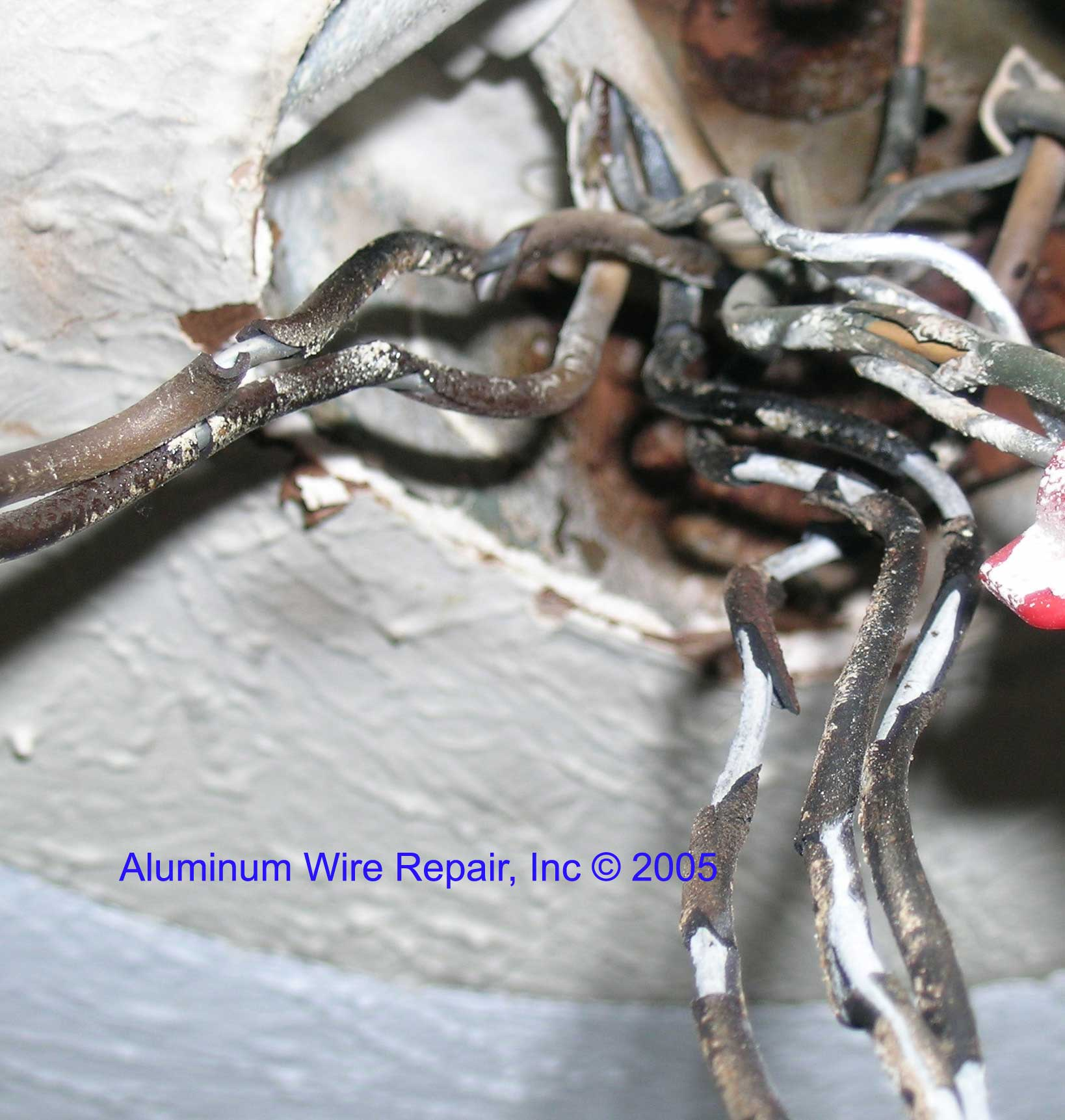 Burnt Wire Nuts Center 20022004 Ford F250 Curt T Connector Wiring Harness 55265 Examples Of Aluminum Repair Inc Rh Alwirerepair Com Almond Peanuts